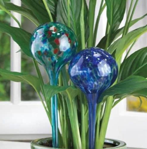 Αυθεντικές Γυάλινες Σφαίρες Αυτόματου Ποτίσματος Για φυτά εσωτερικού-εξωτερικού χώρου