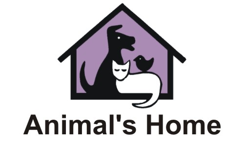 Animals Home