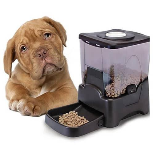 Αυτόματη προγραμματιζόμενη ταΐστρα σκύλου ή γάτας έως 90 γεύματα από 1 έως 4 φορές την ημέρα